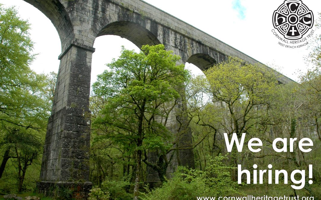 We are hiring!  Vacancy for a Fundraising Officer
