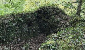 Treffry Viaduct Crib Hut clearance - would you like to help??
