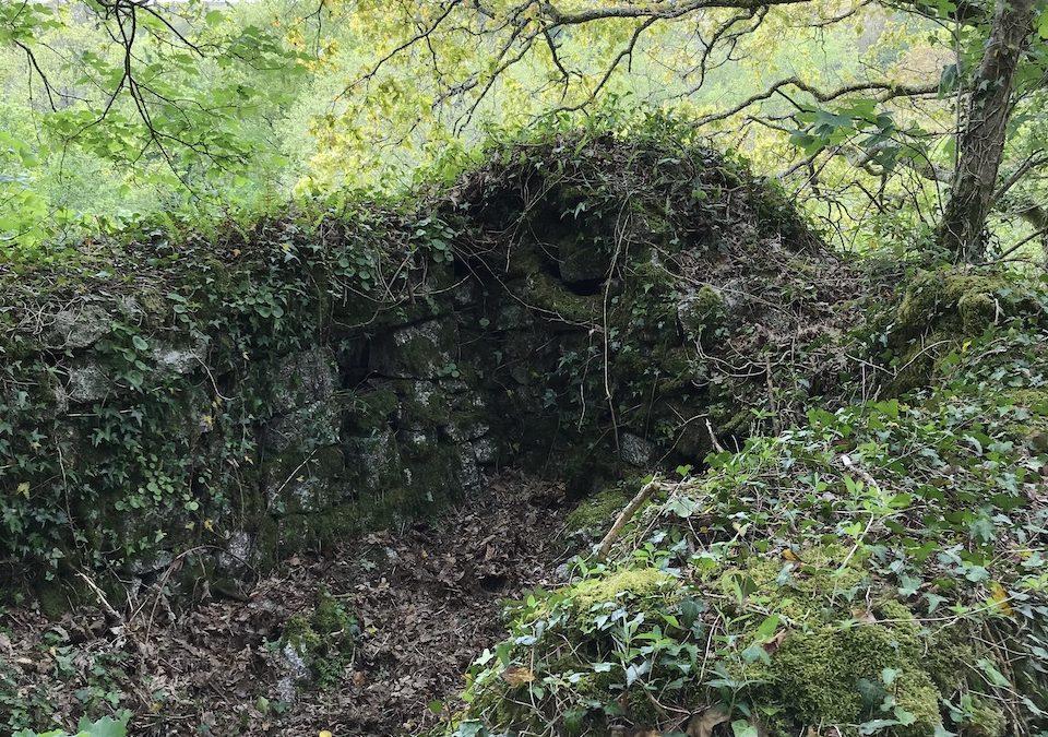 Treffry Viaduct Crib Hut clearance – would you like to help??